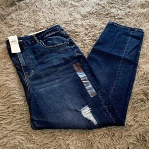 American Eagle Next Level Stretch  Ripped Jegging